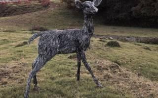 Скульптуры животных из проволоки от Кэндис Биз