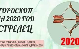 Гороскоп на 2020 год для Стрельцов (женщины и мужчины)