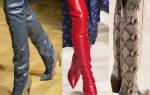 Модные женские сапоги нового сезона