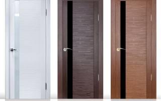 Входные и межкомнатные двери: обзор современных моделей