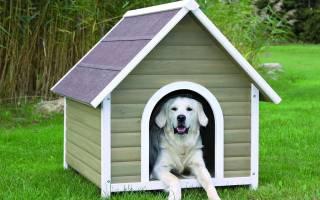 Строим будку для собаки: 10 пошаговых инструкций на фото