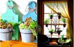 Идеи, которые помогут превратить дом в цветущий оазис