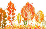 Осенние поделки: 6 интересных мастер-классов