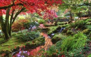 Самые красивые парки в мире