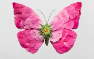 Животные из цветочных стеблей и лепестков