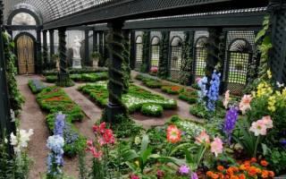 Красивый зимний сад в частном доме: фото-идеи и рекомендации по созданию